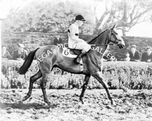 Arkle with Pat Taaffe (b496-02a)